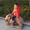 小木林2009